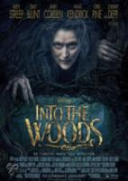 Into the Woods (Bluray)