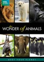 Bbc Earth  Wonders Of Animals