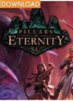 Pillars of Eternity  Hero Edition  download versie
