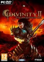 Divinity 2 The Dragon Knight Saga |PC