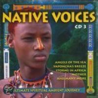 Native Voices 13