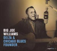 Delta & Chicago Blues Fou