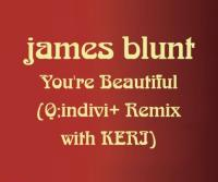 You'Re Beautiful Remix (speciale uitgave)
