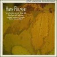 Pfitzner: Symphonies Opp 44 & 46, etc | Albert, Bamberg SO