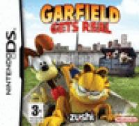 Garfield, Gets Real  NDS