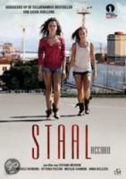 Staal (Acciaio)