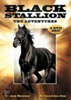 Black Stallion  The Adventures