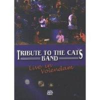 Tribute To The Cats Band  Live In Volendam