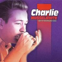 Musselwhite, Charlie  Best of vanguard years (CD)
