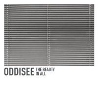 Oddisee  Beauty in all