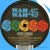 Thomas, Ashley  Tale of four remixes (12MLP)