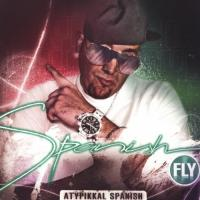 Spanish Fly  Atypikkal spanish (CD)