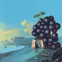 Moby Grape  Wow (CD)